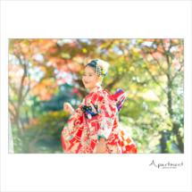 7歳七五三記念撮影/栃木県宇都宮市のフォトスタジオアパートメント/写真館